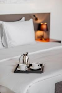 CentreVille Hotel and Experiences, Hotels  Podgorica - big - 10