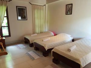 Villa Thakhek, Penziony  Thakhek - big - 216