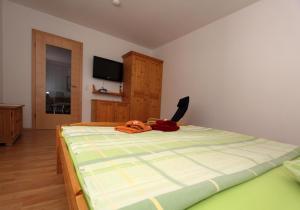 Haus Wibmer - Apartment - Kals am Großglockner