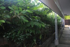 Tegar Guest House Blumbungan, Penzióny  Mengwi - big - 40