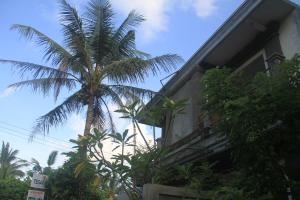 Tegar Guest House Blumbungan, Гостевые дома  Mengwi - big - 49