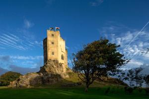 Roch Castle Hotel (20 of 47)