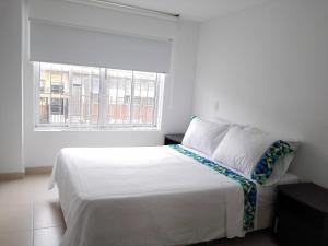 Apartamento Amoblado en Ibague - Ibagué