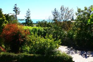 Eleanor Gorrie B & B, Bed and Breakfasts  Nelson - big - 8