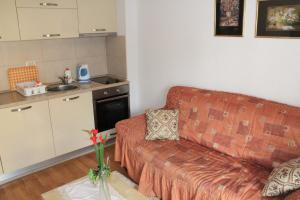 Centar New Mike Apartment, Ferienwohnungen  Budva - big - 19