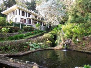 Mountain Retreat AND Trout Fishing Adventure, Roble Alto