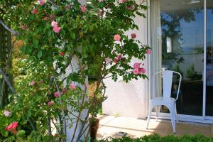 Eleanor Gorrie B & B, Bed and Breakfasts  Nelson - big - 11