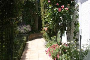 Eleanor Gorrie B & B, Bed and Breakfasts  Nelson - big - 10
