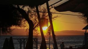 Santana Beach (6 of 81)