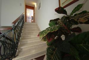 Hotel Vila Sikaa, Hotels  Trogir - big - 47