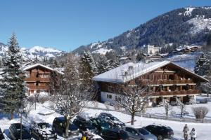 Gstaad Hotels