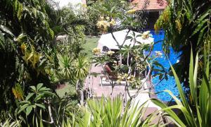 Nitya Home Stay Lembongan, Homestays  Nusa Lembongan - big - 43