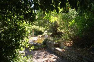 Quinta das Aveleiras, Farm stays  Torre de Moncorvo - big - 49