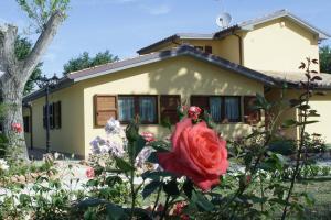 Country House La Madonnina - AbcAlberghi.com