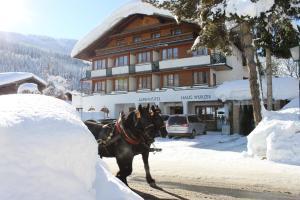 obrázek - Alpenhotel Wurzer