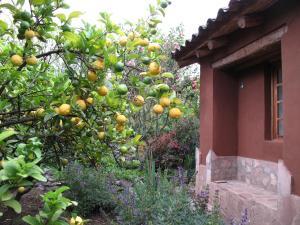 Casa De Aida, Проживание в семье  Калька - big - 18