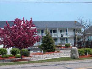 obrázek - Sunrise Beach Motel