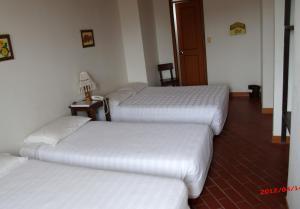 弗拉諾若斯德爾金迪奧酒店
