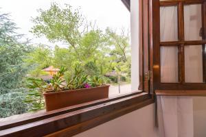 Cabañas Gonzalez, Lodge  Villa Gesell - big - 19