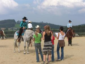 Espi-Stables Ferienhof Esterhammer, Farm stays  Liebenau - big - 25