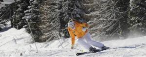 Sciare in Trentino - AbcAlberghi.com