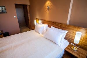Panorama Top Floor Rooms in Hotel Tundzha, Гостевые дома  Ямбол - big - 64