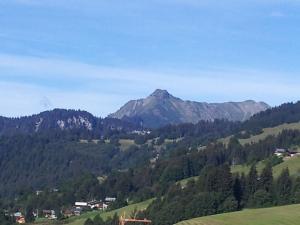 Location gîte, chambres d'hotes Gorgeous Chalet on Mountain Slopes in Les Gets dans le département Haute Savoie 74