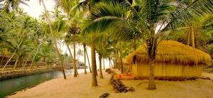 Krishna Paradise Beach Resort, Campeggi di lusso  Cola - big - 67