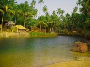 Krishna Paradise Beach Resort, Campeggi di lusso  Cola - big - 68