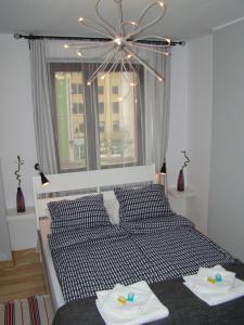 Apartamenty Ogrody 11
