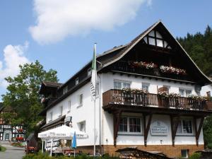 Apartment Medebach 3, Ferienwohnungen  Medebach - big - 1