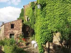 Apartment Casa Verde - Graffignano