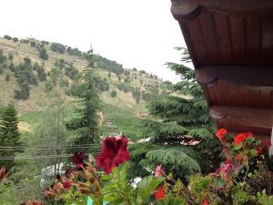 Mina Teva, Holiday homes  Metulla - big - 24