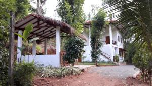 Zee's Garden - Rattota