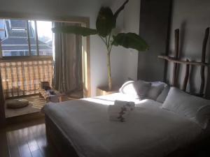 Jing Pu Plant Theme Hostel, Hostely  Jinghong - big - 73
