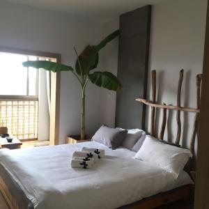 Jing Pu Plant Theme Hostel, Hostely  Jinghong - big - 72