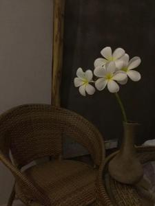 Jing Pu Plant Theme Hostel, Hostely  Jinghong - big - 66