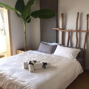 Jing Pu Plant Theme Hostel, Hostely  Jinghong - big - 50