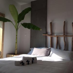 Jing Pu Plant Theme Hostel, Hostely  Jinghong - big - 23