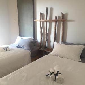 Jing Pu Plant Theme Hostel, Hostely  Jinghong - big - 21