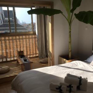 Jing Pu Plant Theme Hostel, Hostely  Jinghong - big - 27