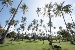 Koh Kood Beach Resort, Resorts  Ko Kood - big - 41