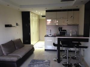 Apartments Vanja i Vrh, Апартаменты  Копаоник - big - 66