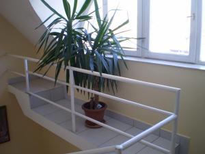Tarr Apartmanok, Penzióny  Keszthely - big - 50