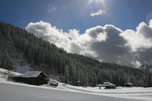 La Chanterelle - Mountain Lodge - Le Praz de Lys