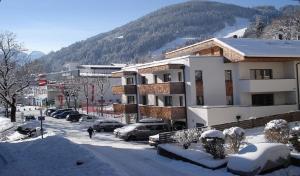 Appartement Living Schönwies - Apartment - Zell am See