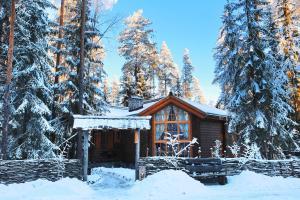 Дом для отпуска Шишки на Лампушке - Русская Деревня