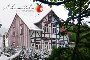 Harzhaus Schneewittchen - Benneckenstein