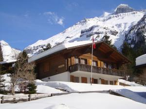 Ferienwohnung Chalet Bergblume - Apartment - Kandersteg