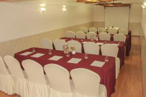 Radisson Hotel Del Rey Toluca, Hotels  Toluca - big - 49